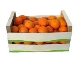 Früchte & Saft
