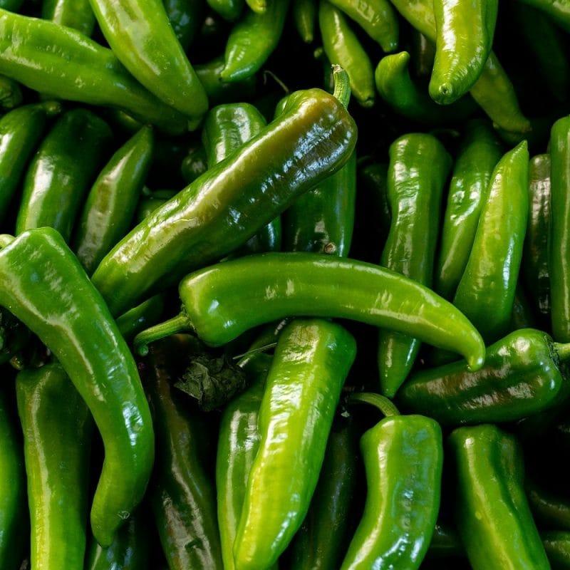 Spitzpaprika bio Griechenland